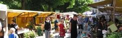 Ecologische markt op de Kollwitzplatz